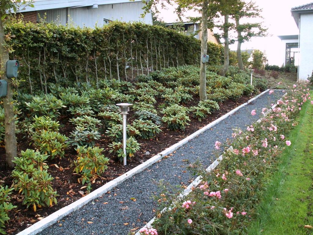 Rhododendron bed afgrænses af granit kantsten