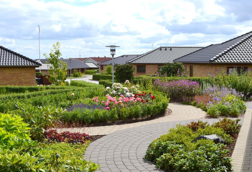 Varieret beplantning i en have i Herning