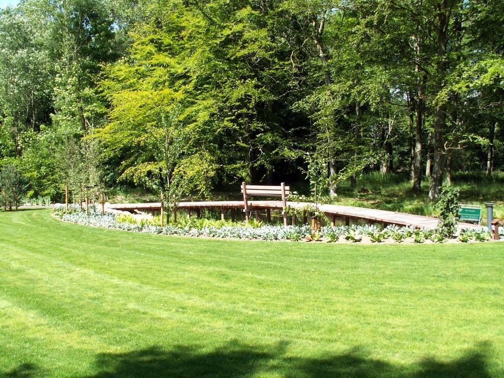 Græsplæne og bro i azobétræ