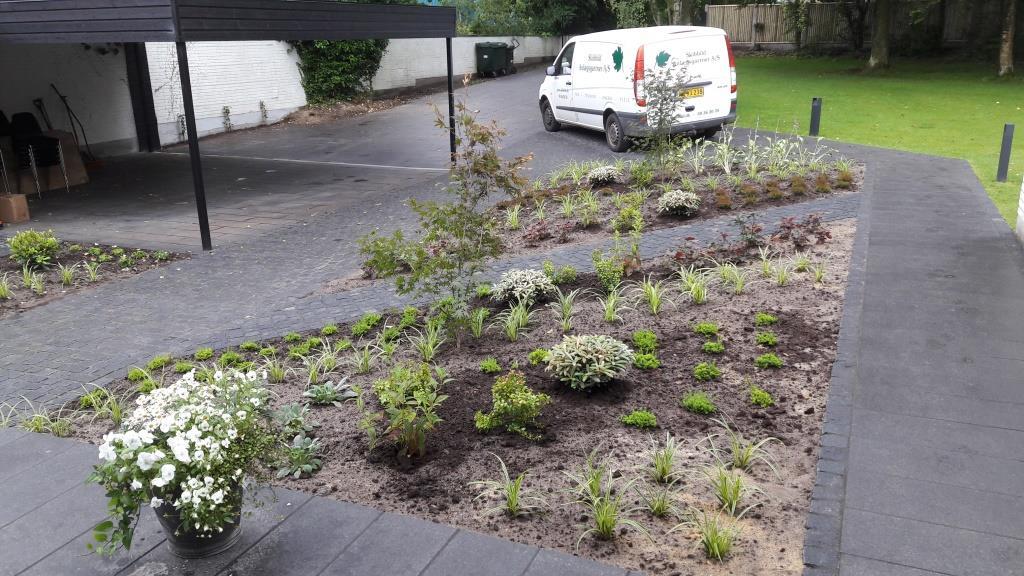 En ny tilplantet have